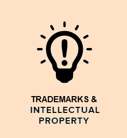 Trademarks and IP